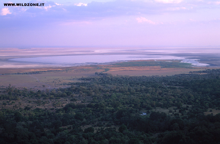 Lake Manyara and forest, seen from the western rim of the Rift valley.