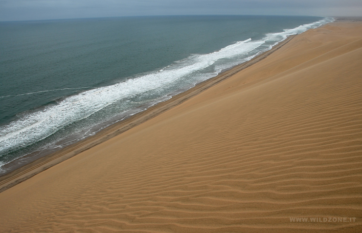 The steep slope of a dune along the Atlantic coast